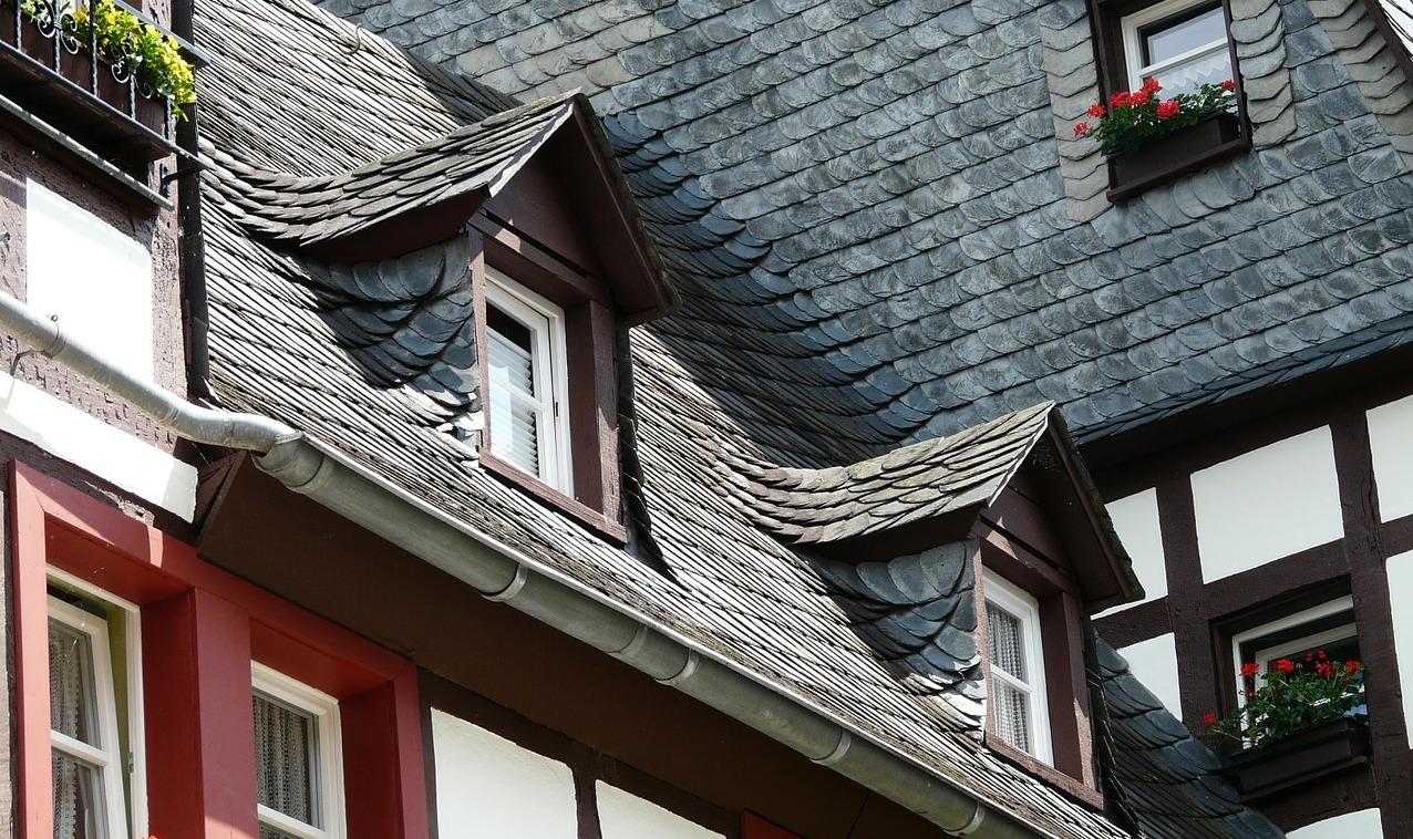 Natuurleien dak